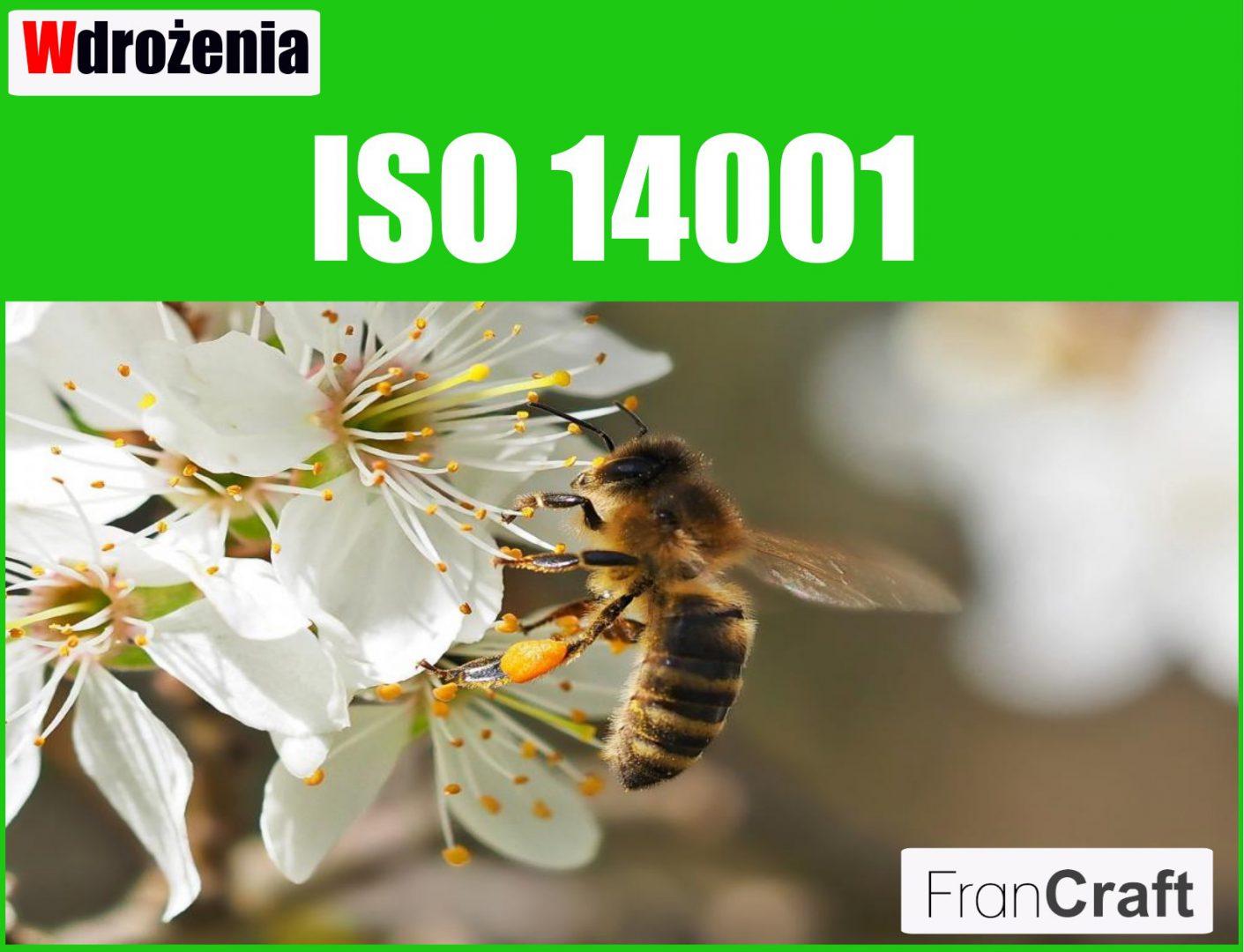 wdrażanie normy ISO 14001 zarządzanie środowiskiem